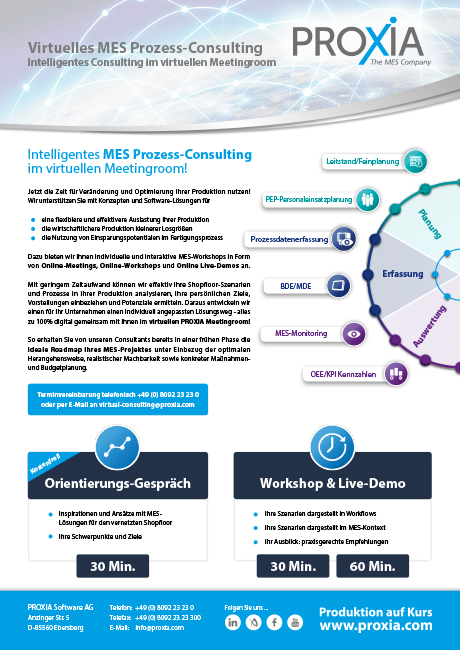PROXIA Flyer Virtual Prozess-Consulting